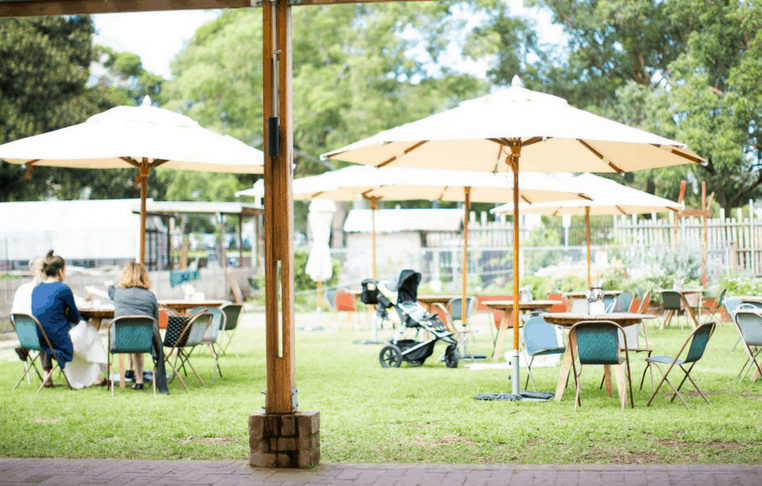 Acre Eatery Camperdown Commons Family friendly dining