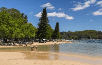 Best kid friendly park northern beaches